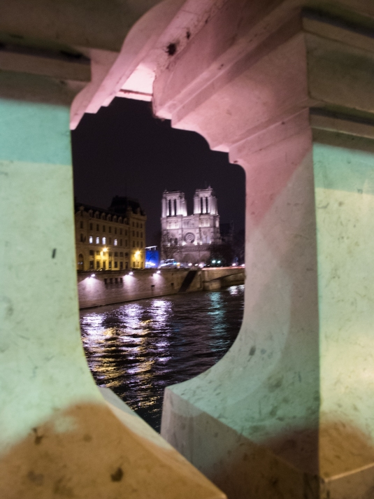 Notre Dame at night by Sharon Birke www.PowerfulGoddess.com