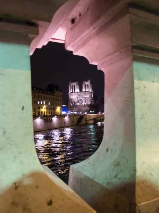 Notre Dame at night by Sharon Birke www.PowerfulGoddess.com