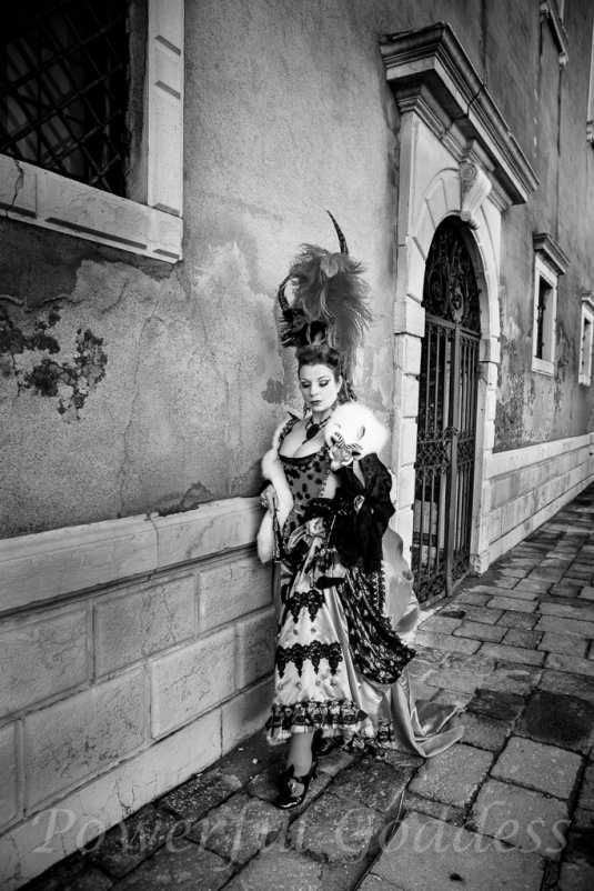 _S5A0598NYC-NJ-Glamour-Portraits-Period Costume-Venice-Carnival-Sharon-Birke
